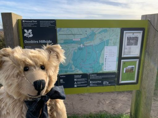 Bertie standing by the interpretation board for Denbies Hillside.