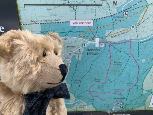 Bertie at the map board of Denbies Hillside.