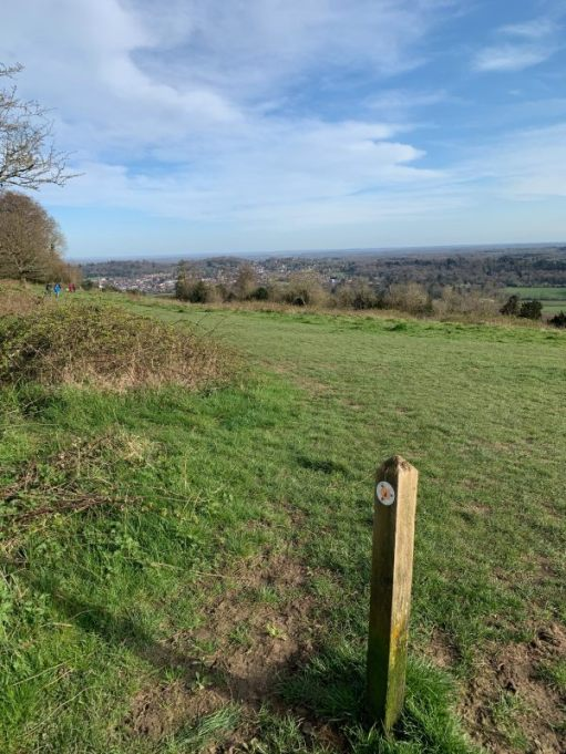 Looking east over the rolling grassy hills to Dorking, with a way marker in the foreground.