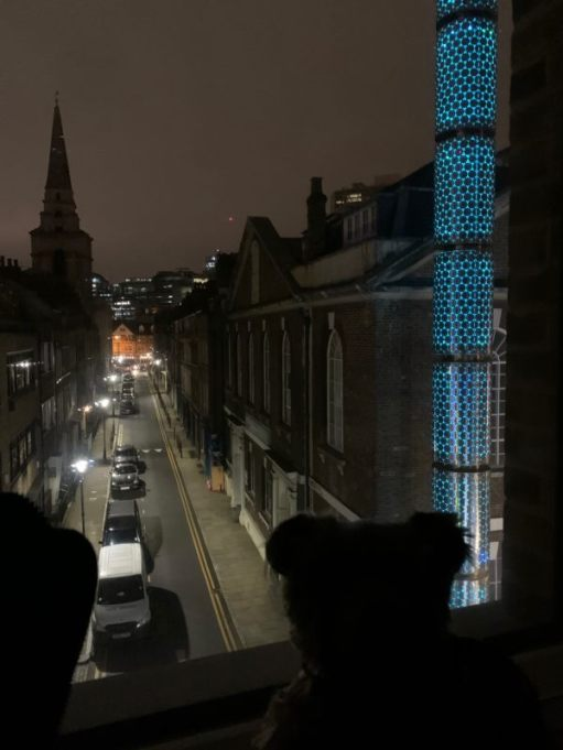 The Mosque in Fournier Street illuminated in dark blue.