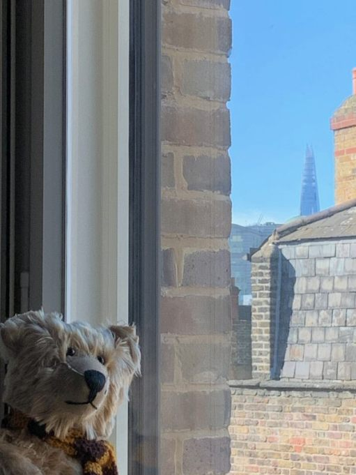 Bertie in the window of room 311 looking just to the left of the building on the corner of Brick Lane and Fournier Street, where the Shard is just visible.