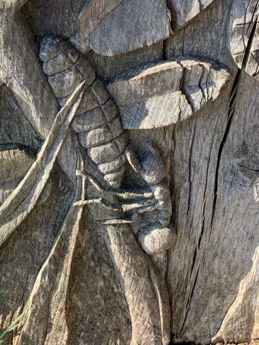 All represented in the wooden sculpture: From ant to pupa to horseshoe vetch to …