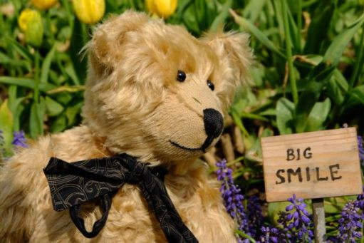 """Bertie looking at a sign that says """"Big Smile"""" in Dubsborough Park Gardens."""