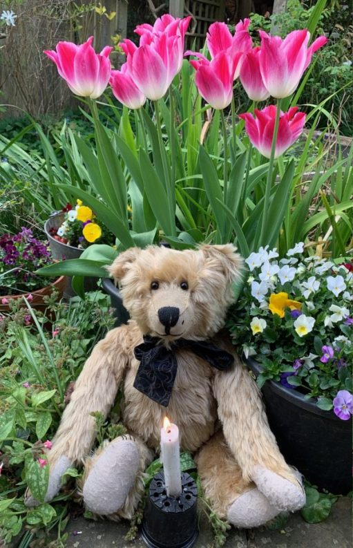 Bertie, sat in front of some tulips, with a lit candle for Diddley in front of him.