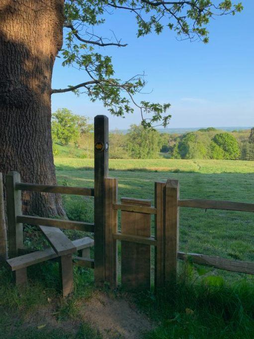 A good stile. Two steps. A stabilising pole. A dog gate.