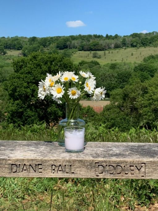 The vase of Moondaisies set on Diddley's Bench, set behind a lit candle.