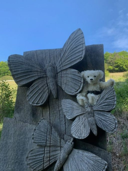 Trevor sat on a wood carved statue with Adonis Blue butterflies feature.