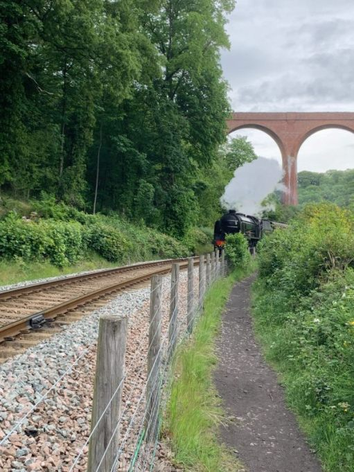 "Schools Class ""Repton"" pulling a train under a viaduct on the North Yorkshire Moors Railway."
