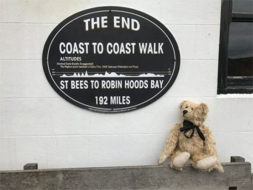 Bertie sat on a bench on front of a plaque marking the end of the Coast to Coast Walk - all 192 miles of it!