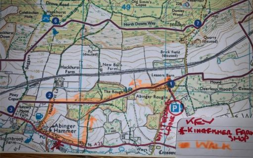 Map of the Watercress Walk - the route highlighted in peach.