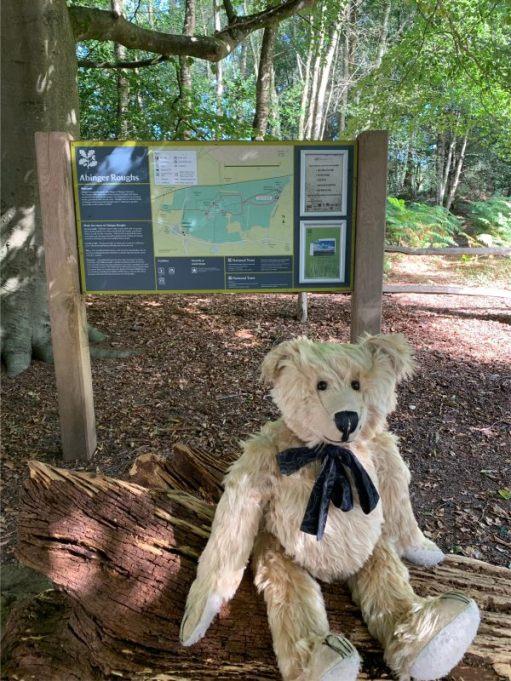Bertie in front of the Abinger Roughs Notice Board.