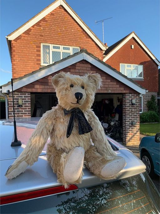 Bertie on the roof of a silver car outside a house.