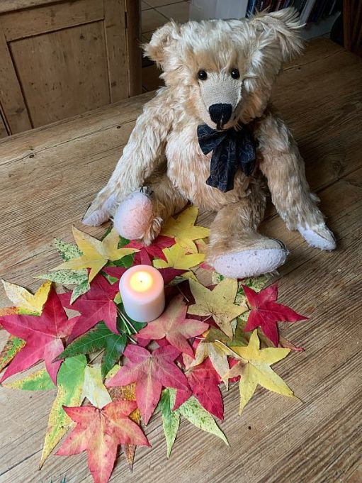Bertie, with a candle lit for Diddley amidst a pile of brightly coloured autumn leaves.