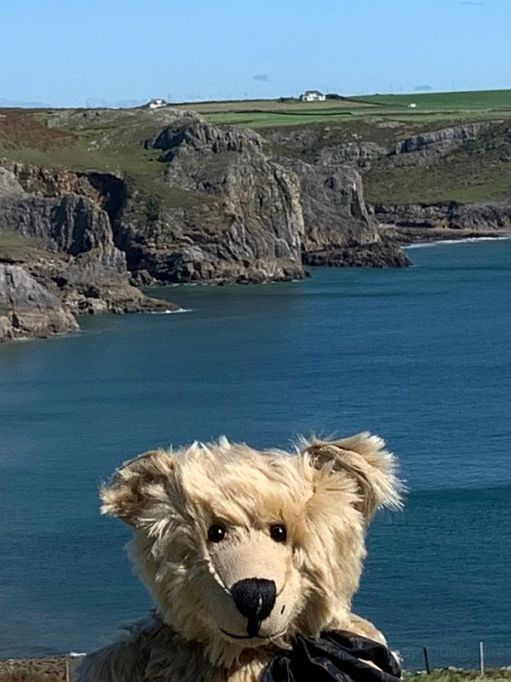 Ty Dwr across Fall and Mewslade Bays. (Above Bertie's left ear).