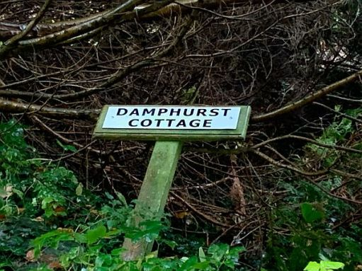 """A collapsed sign for """"Damphurst Cottage"""""""