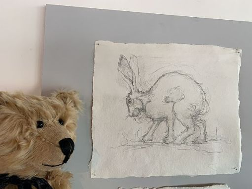 Bertie looking at the hand drawn picture of a hare in the visitor centre of Oriel y Parc, St David's.