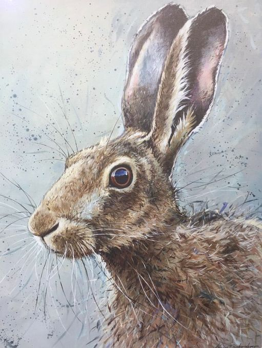 Colour drawing of a hare.