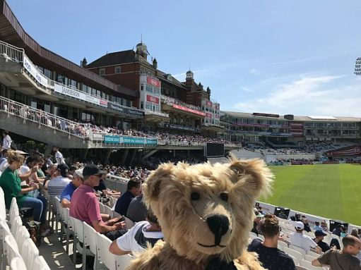 Bertie at a full Oval ground.