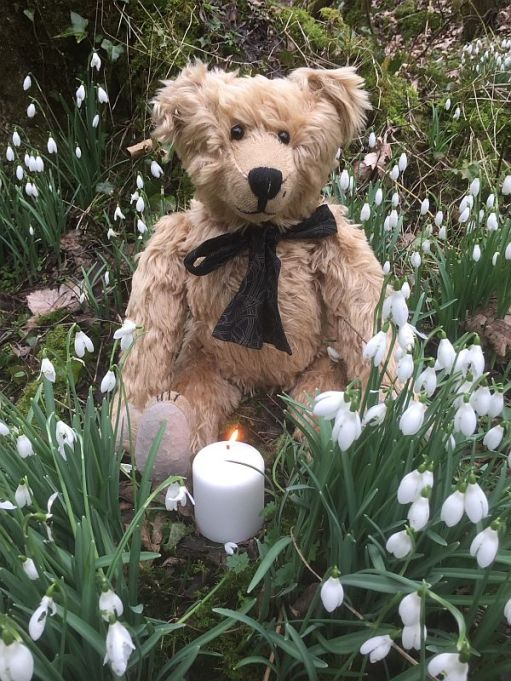Bertie sat in amongst the Snowdrops at Cherington Lake, 15 February 2017. A white candle lit for Diddley is in front of him.