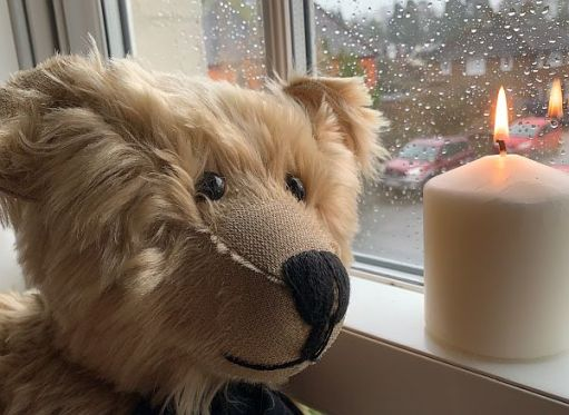 Bertie against a window covered in raindrops, with a candle lit for Diddley in front.