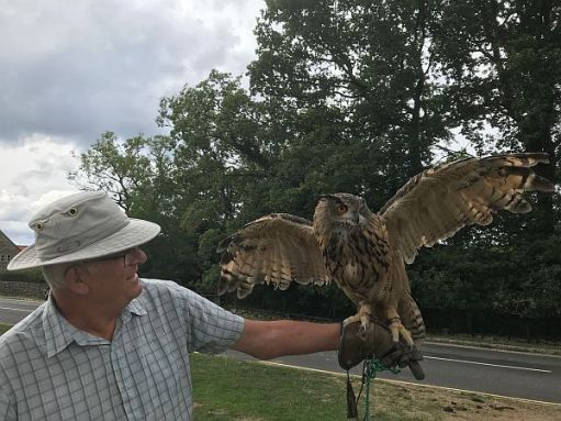 First Tilley, Goathland. Eagle Owl.