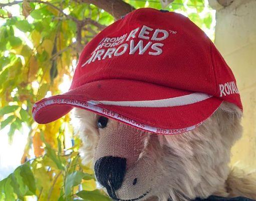 """Bertie wearing a """"Red Arrows"""" Cap."""