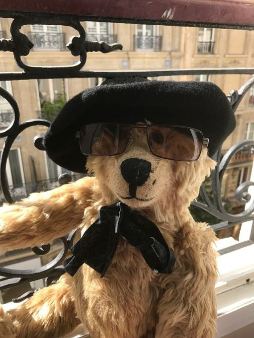 Bertie wearing a cap and sun glasses in the window of a French hotel.