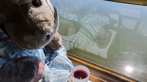 Henry the Hippo with a candle lit for Diddley at the window looking onto the canal.