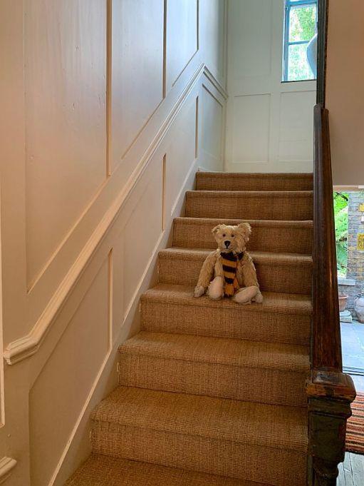 Bertie sat halfway down the stairs in 31 Fournier Street.