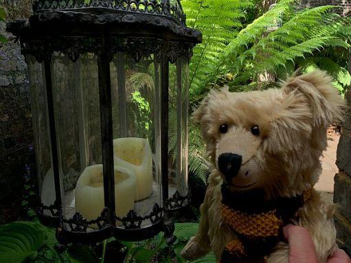 Bertie by a candle lantern in the garden of 31 Fournier Street.