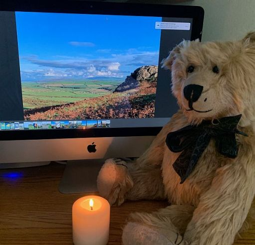 Bertie sat in front of a computer viewing the photographs in this blog, alongside a candle lit for Diddley.