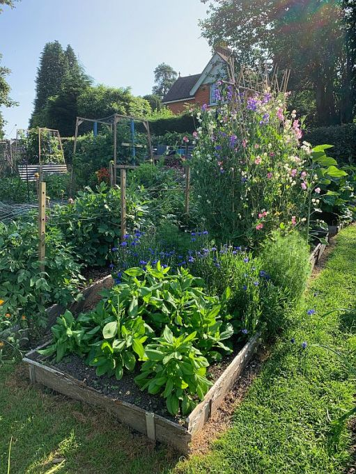 The Allotment.