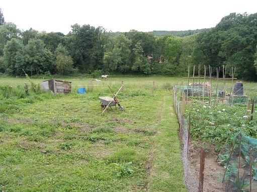 The Allotment in 2008.