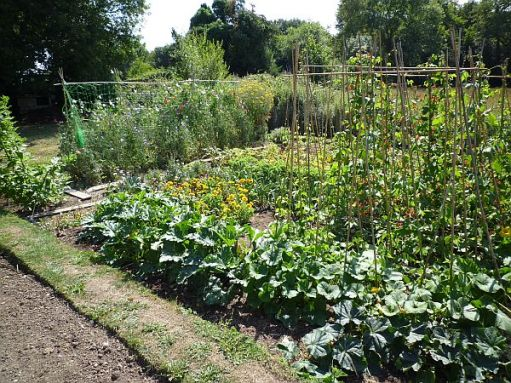 The allotment in 2010.