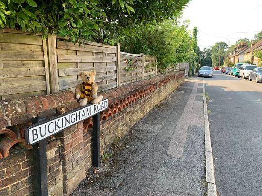 "Bertie on the ""Buckingham Road"" sign."