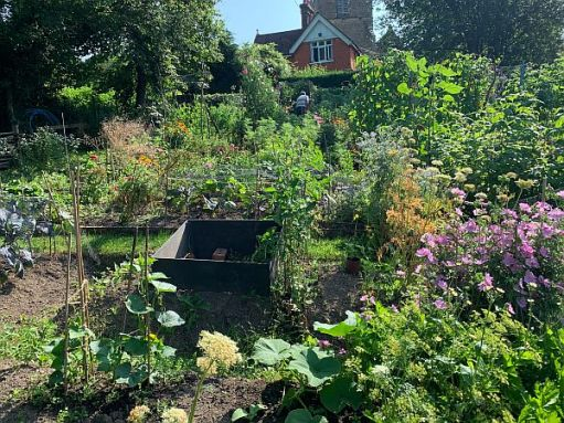 And the others. Our apologies to those whose names we have missed, but their allotments are within these pictures. As is the church.