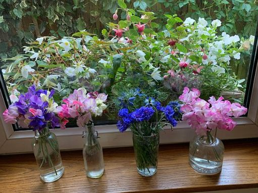 The flowers all in vases at Laurel Cottage.