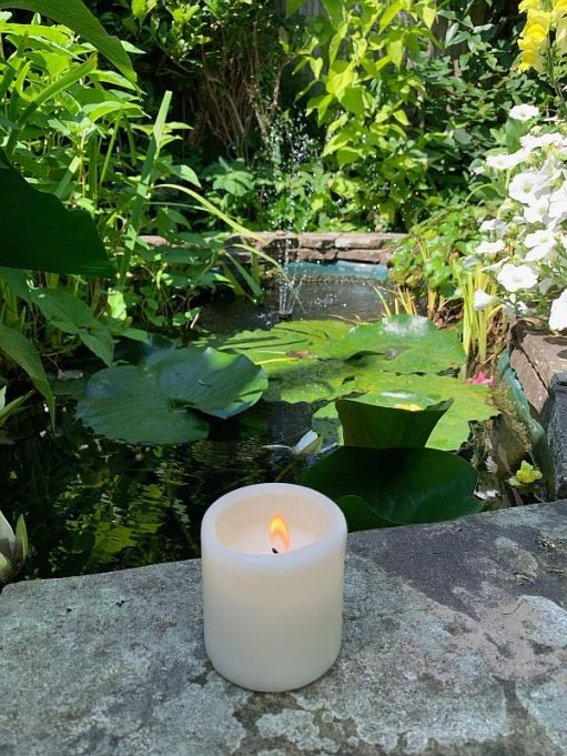 A Candle lit for Diddley by a Lily pond.