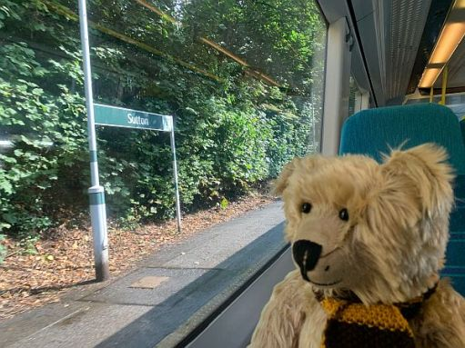 Bertie sat on the table in a Southern train looking out the window at Sutton station.