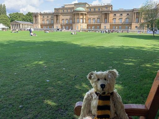 Bertie sat on a bench in the garden with the rear of Buckingham Palace in the background.