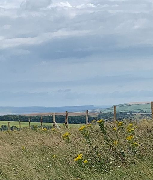 Seaford Head from Ditchling Beacon.