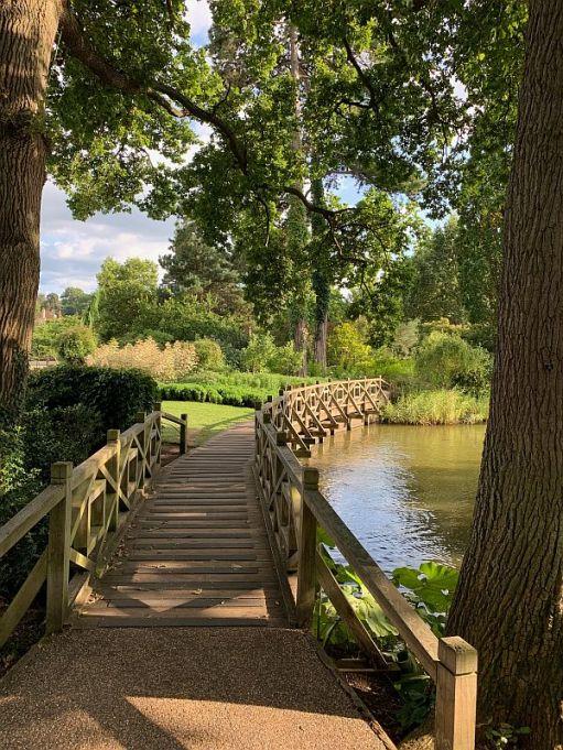 Boardwalk, Wisley Gardens.