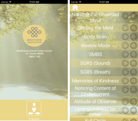 mblc-ya apps