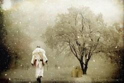 Explore Mindfulness Through Walking Meditation