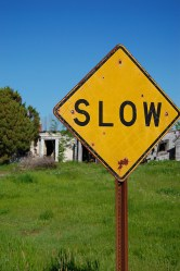 Slow Down... Become Mindful