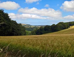Fields by Sharpham