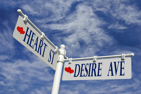 Image result for emotion and desire