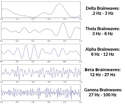 Brainwave Chart