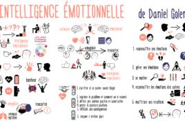 L'intelligence émotionnel de Daniel Goleman