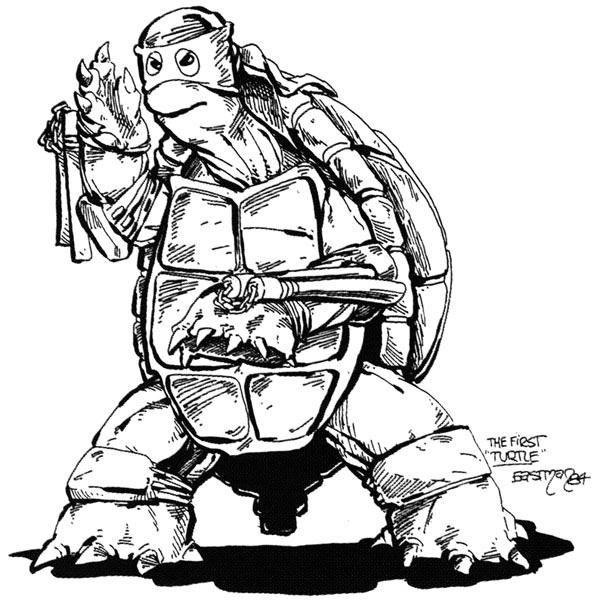 1st_turtle_eastman[1]